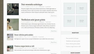 aggregate elegant avjthemescom - Aggregate WordPress Theme