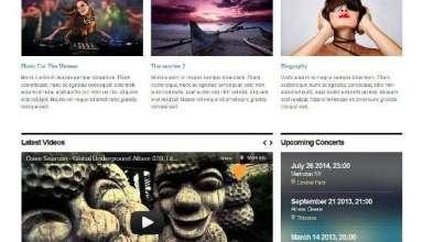stereosquared cssigniter avjthemescom 01 - StereoSquared WordPress Theme