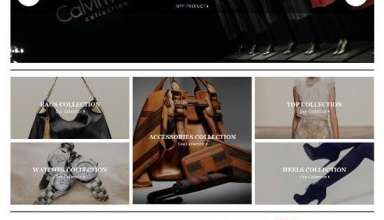 opulence colorlabsproject avjthemescom 1 - Opulence WordPress Theme