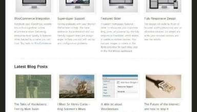 function woothemes avjthemescom 01 - Function WordPress Theme
