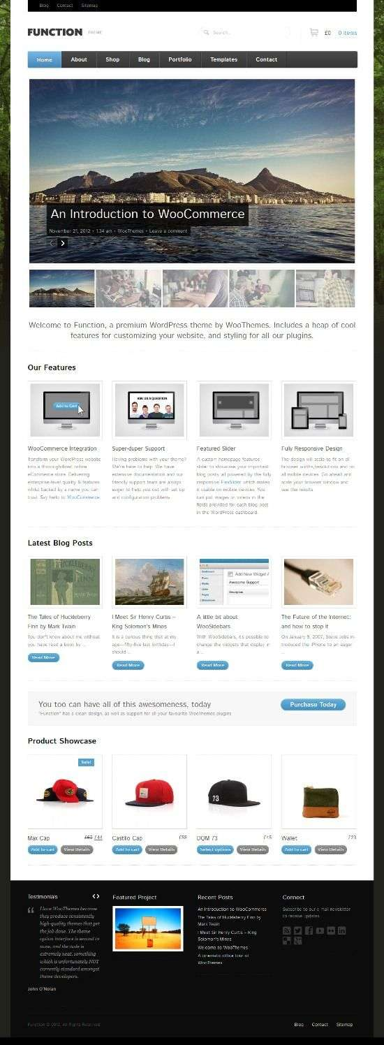 function woothemes avjthemescom 01 - Function WordPress Theme