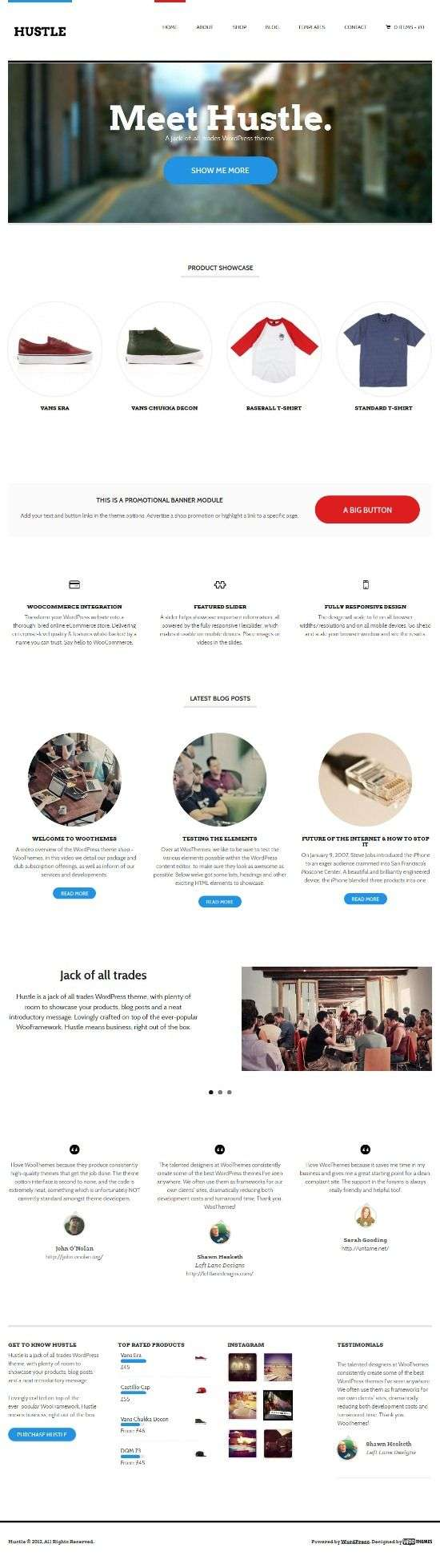 hustle woothemes avjthemescom 1 - Hustle WordPress Theme