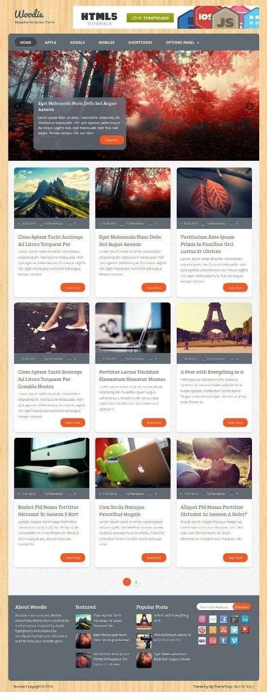woodie mythemeshop avjthemescom 1 - Woodie WordPress Theme