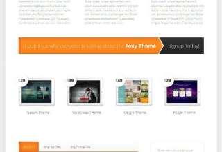 foxy elegantthemes avjthemescom 01 - Foxy WordPress Theme