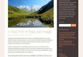 reddinger ithemes avjthemescom 01 - Reddinger WordPress Theme