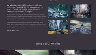 myriad rockettheme wordpress 01 - Myriad WordPress Theme