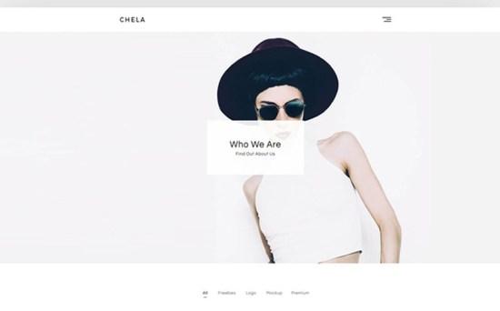chela wordpress theme 01 - Top 20 Fresh Feminine & Minimal WordPress Themes
