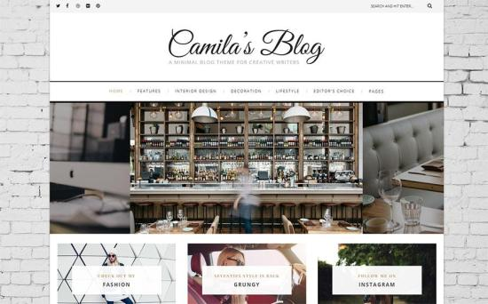 Camila WordPress Theme