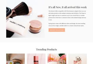 templatic ecommerce wordpress theme 01 1 - Templatic eCommerce WordPress Theme