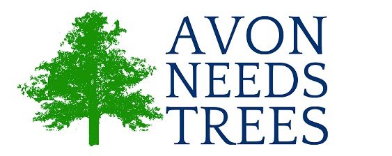 Avon Needs Trees