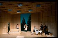 Le Canard sauvage, par Braunschweig - #théâtre