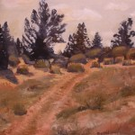 painting at wyperfeld national park