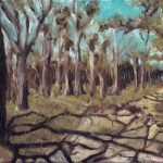 oil painting of shadows cast over a path, wyperfeld national park