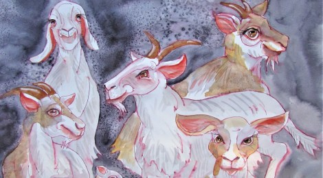 Water colour painting of a heard of comical goats