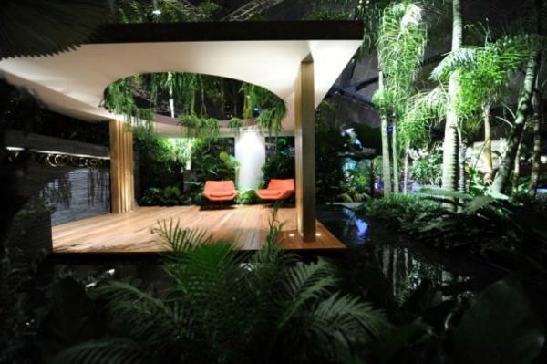 Aquatic House Plants
