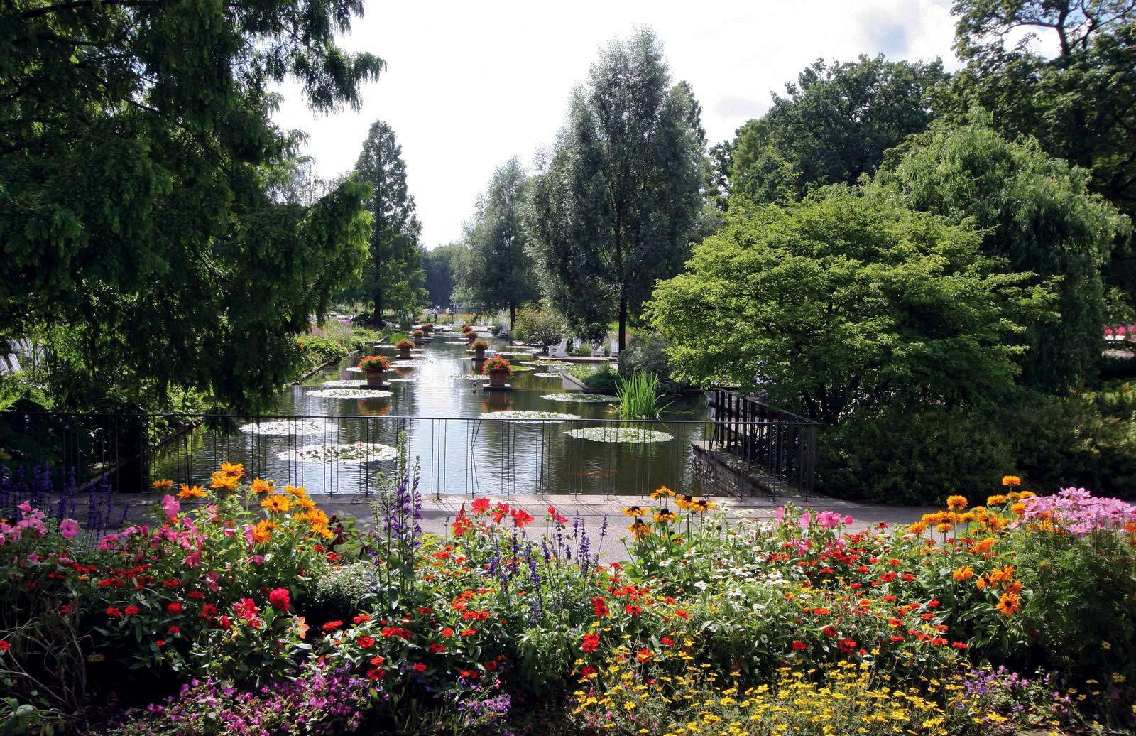 Resultado de imagem para Hamburg botanic garden