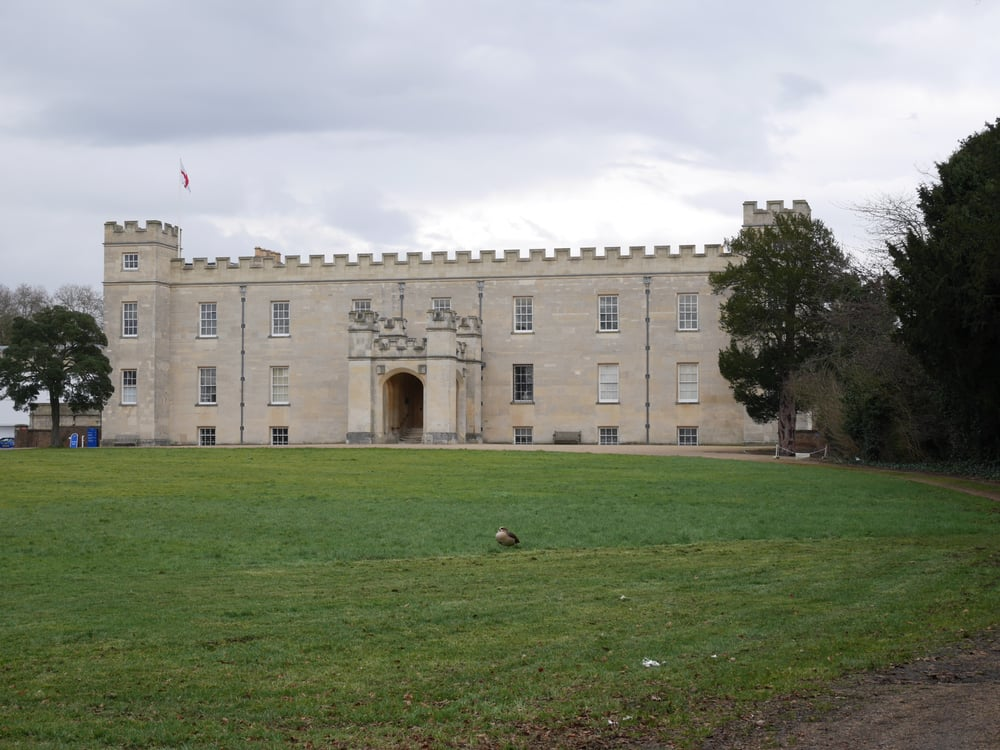 Syon House and a pheasant?
