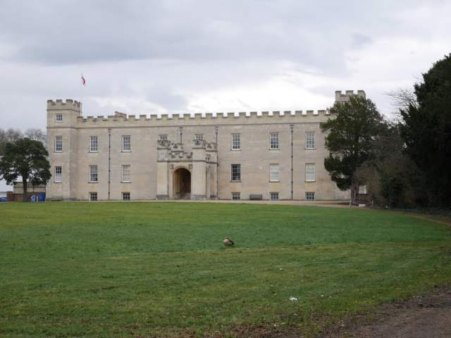 Syon House and a pheasant?