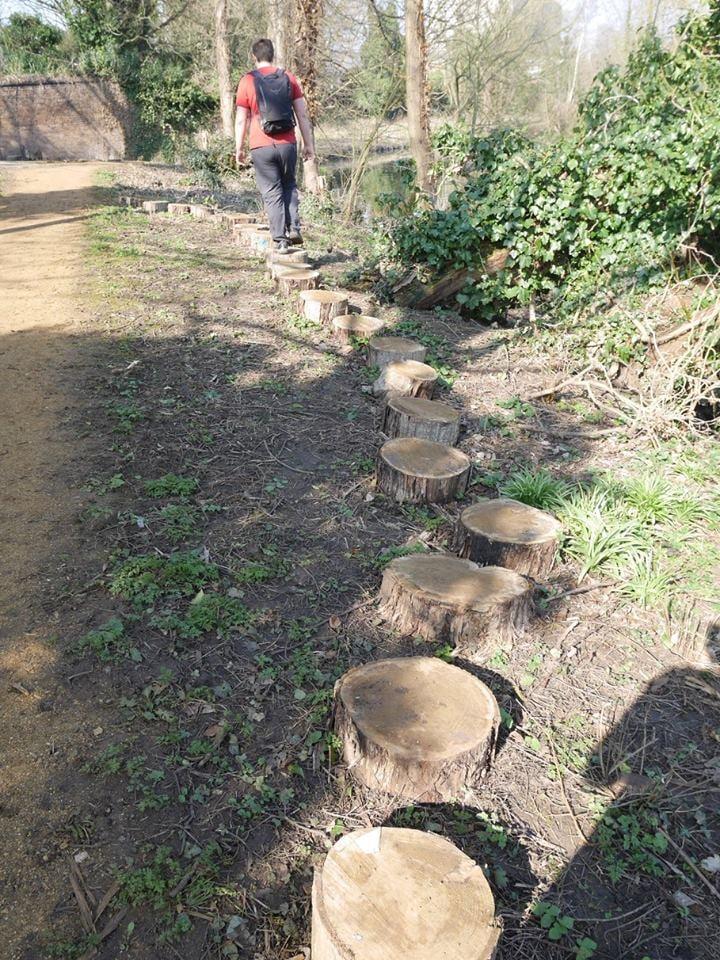 Path of logs