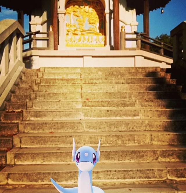 Narcissist dragon by a pagoda