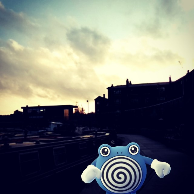 Blue swirly frog admiring the sunset