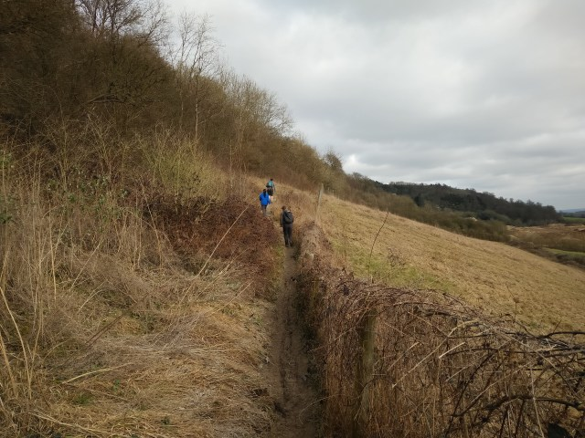 Chalky walk along the ridge