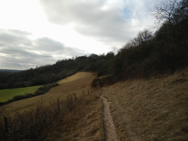 Chalky walk along the Downs
