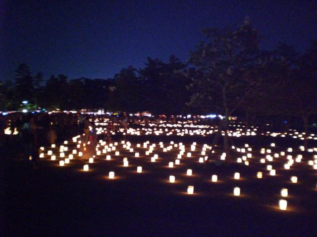 Tokae matsuri in Nara Park