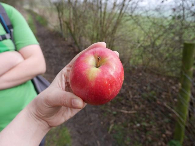Appletime