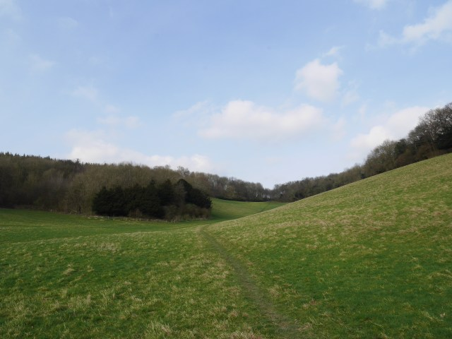 Looking back up the the Downs