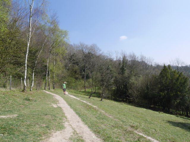 Chalk pathways on Kemsing Downs