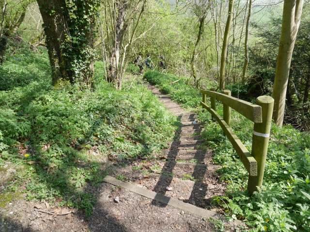 Down toward the Pilgrims way
