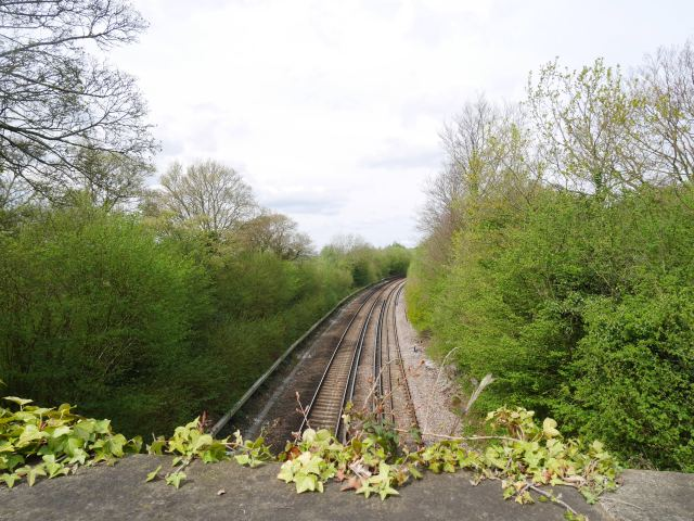 Railway line on the edge of Mill Hill wood