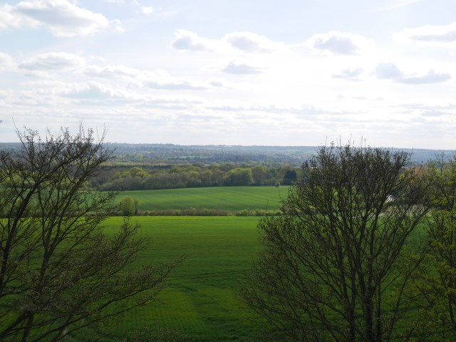 The view from the top of Detling