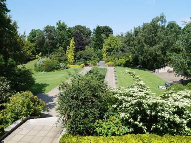 The Hill garden's pond