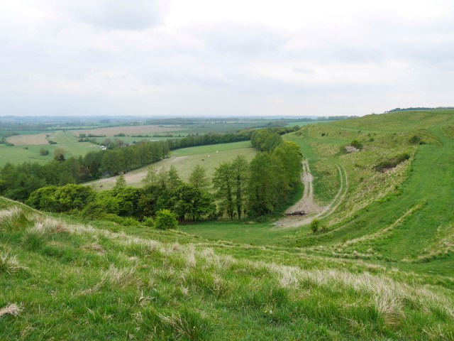 The curvy lines of the chalk pit