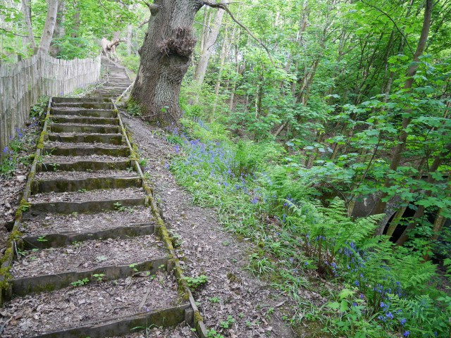 There are 125 steps down (or up!) to get to Sandling station