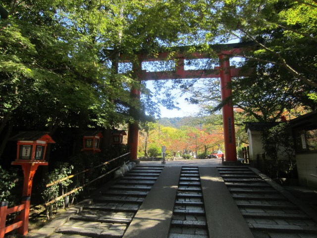 I love massive Torii gates! This one is in Kyoto