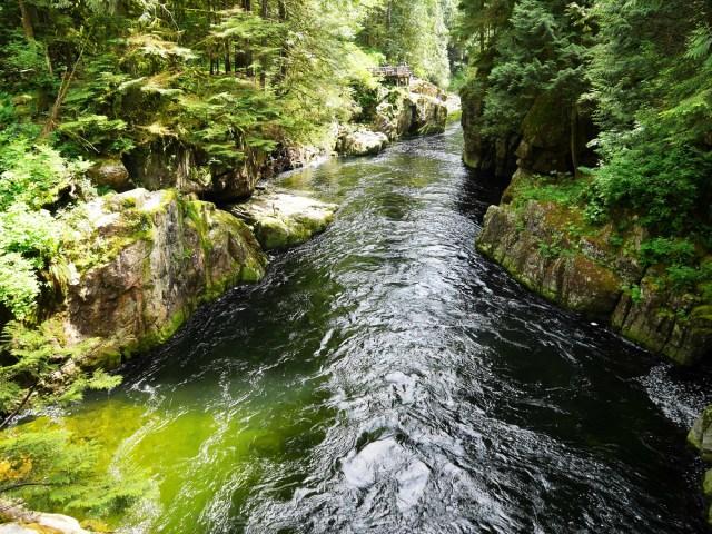 The Capilano river