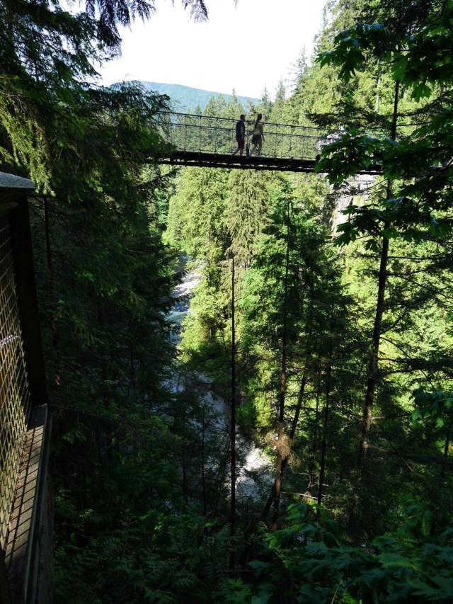 Capilano Suspension bridge from below