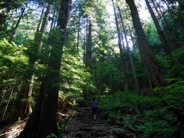 Near the start of the Grouse Grind