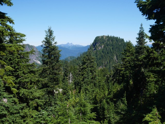 Goat Mountain from Dam Mountain