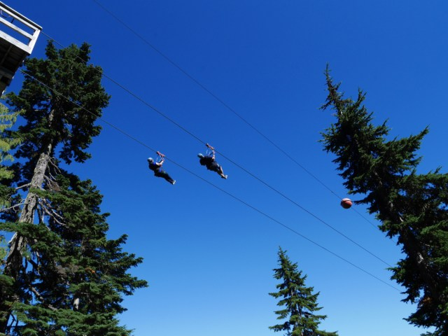 Zip-lines from Grouse