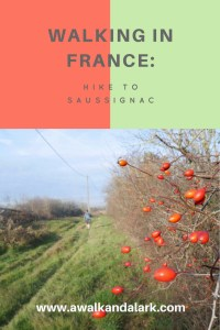 Hiking to France, through vineyards to Saussignac