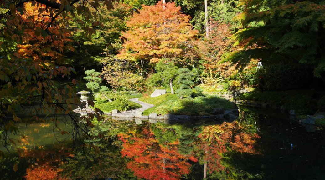 Vancouver Sights - Nitobe Memorial Garden in Autumn - A walk and a lark