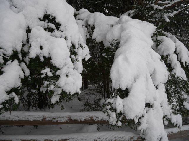 Balancing snow