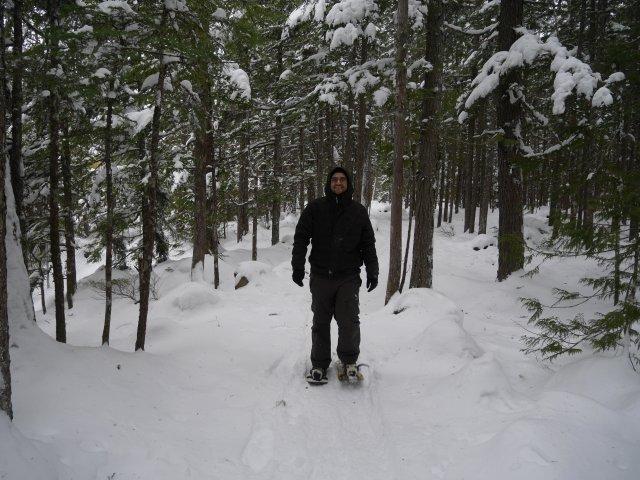 Snowshoe Marc