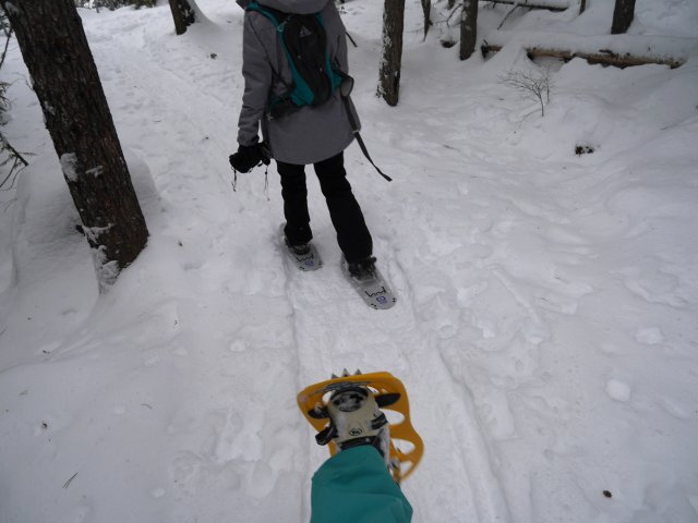 Showing how snowshoes work