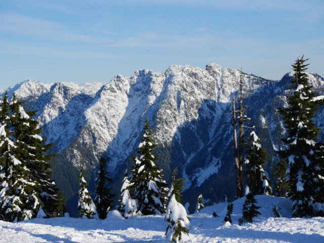Crown Mountain from Hollyburn Mountain