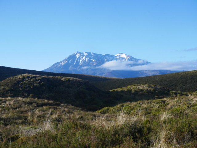 Mount Ruapehu from Tongariro National Park